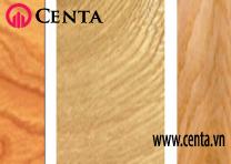 13-Go-xoi-trang  Cach-phan-biet-cac-loai-go  www.centa.vn