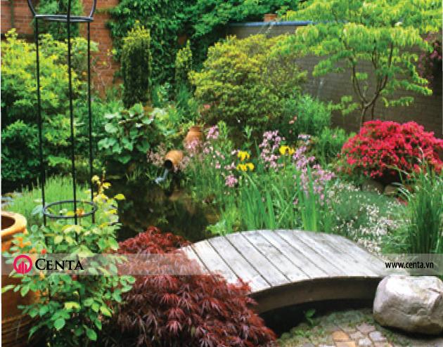 Cây cảnh sân vườn biệt thự nhà đẹp 2020