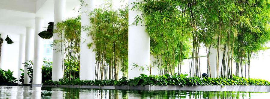 khong-gian-xanh-t _www.centa.vn