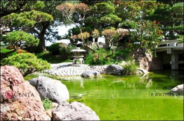 Hồ nước nhỏ có đá và cây tùng phong cách sân vườn Nhật