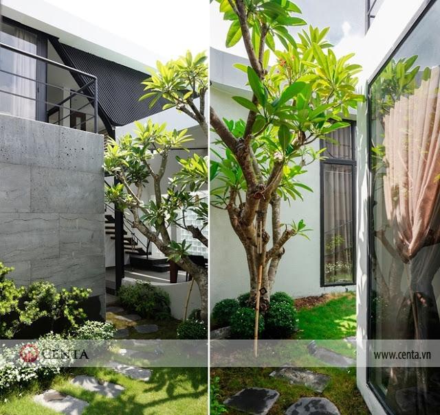 Trồng cây xanh, tiểu cảnh sân vườn thảm cỏ lát đá vườn biệt thự đẹp