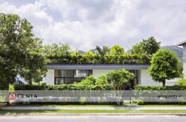 Thiết kế nhà có cây xanh trên mái, thiết kế biệt thự